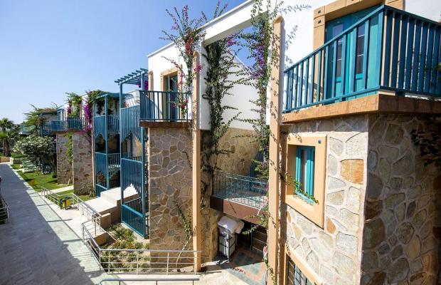 фотографии отеля Jasmin Beach Hotel изображение №3