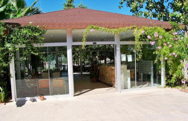 фото Club Turkuaz Garden изображение №22