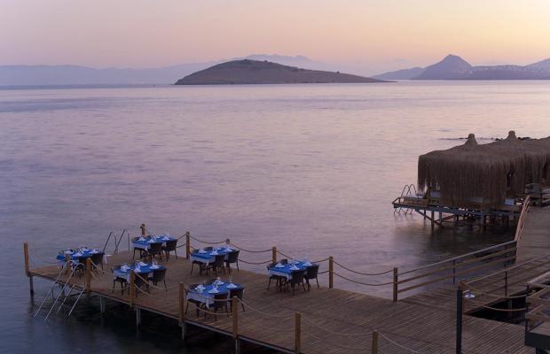 фотографии отеля Aktur Residence изображение №79