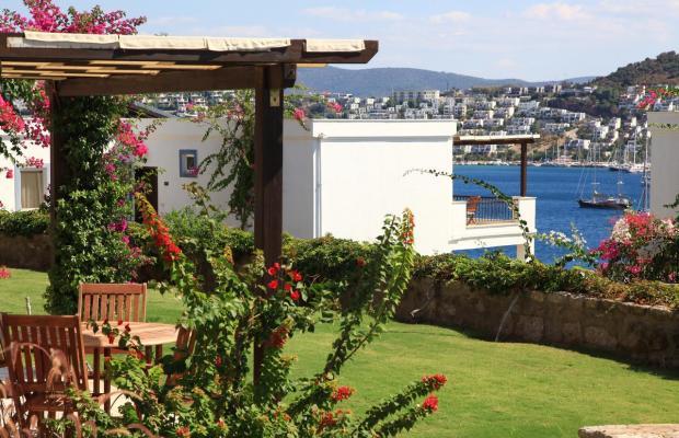 фотографии отеля Aktur Residence изображение №51