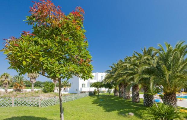 фото отеля Alexandra Beach Hotel изображение №5