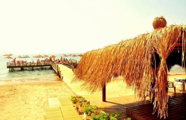 фотографии Woxxie Hotel Akyarlar (ex. Feye Pinara) изображение №20