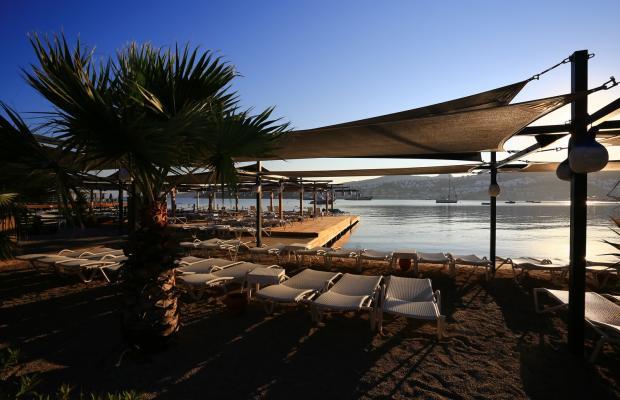 фотографии Costa Farilya Special Class Hotel Bodrum изображение №36