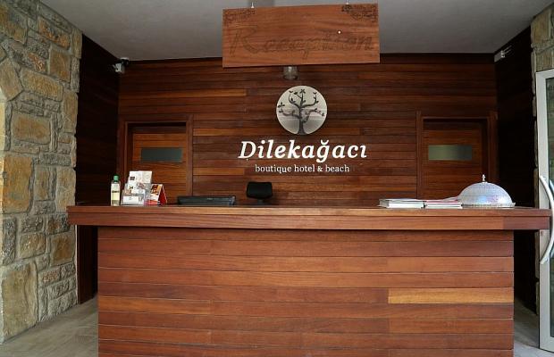 фотографии отеля Dilekagaci Boutique Hotel & Beach изображение №11