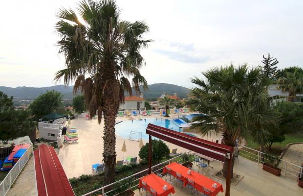 фотографии Daisy Garden Resort (ex. Violet Hotel; Big Rose) изображение №8
