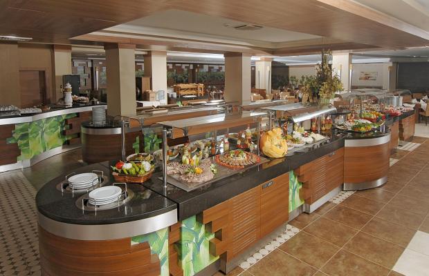 фотографии Ambassador Hotel (ex. Ambassador Plaza) изображение №8