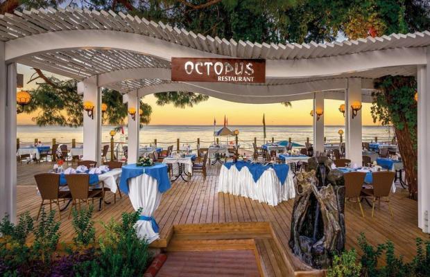фотографии отеля Crystal Aura Beach Resort & Spa (ex. Alatimya Village) изображение №23