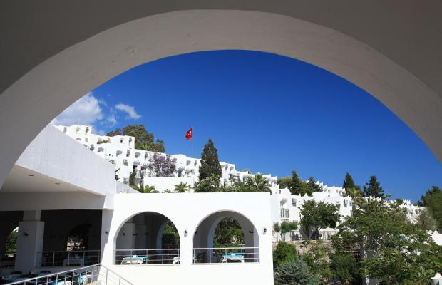 фотографии отеля Bodrum Bay Resort (ex. Virgin Bodrum; Joy Club Bodrum) изображение №31