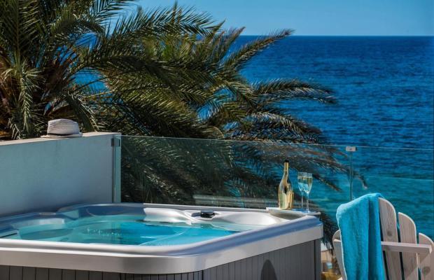 фотографии Drossia Palms Hotel Studios  изображение №4