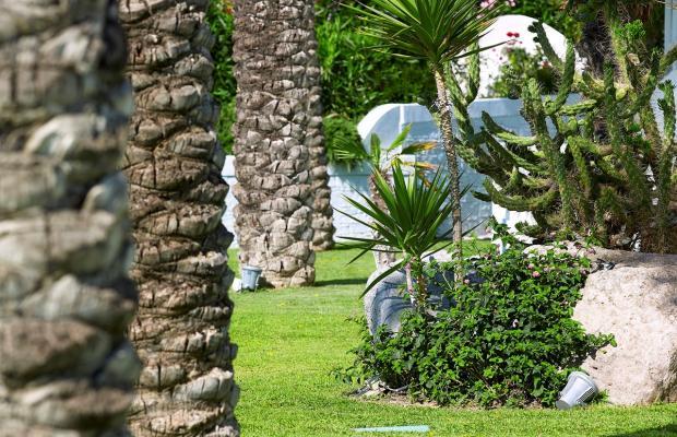 фото Dimitra Beach Resort изображение №50