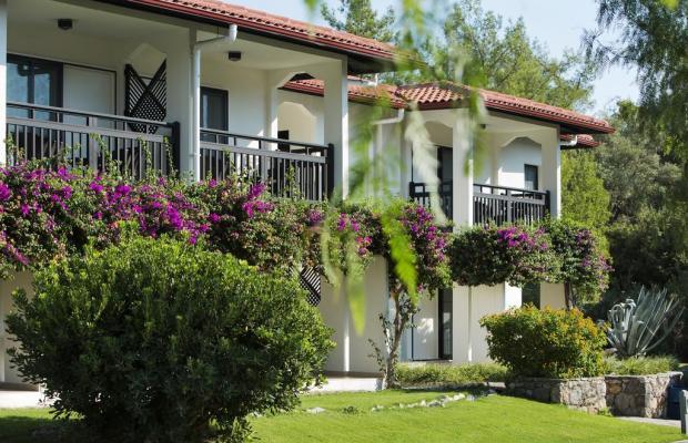 фотографии отеля Tui Blue Sarigerme Park (ex. Iberotel Sarigerme Park) изображение №43