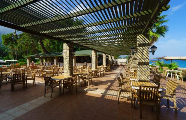 фотографии отеля Armas Gul Beach (ex. Otium Gul Beach Resort; Palmariva Club Gul Beach; Grand Gul Beach) изображение №23