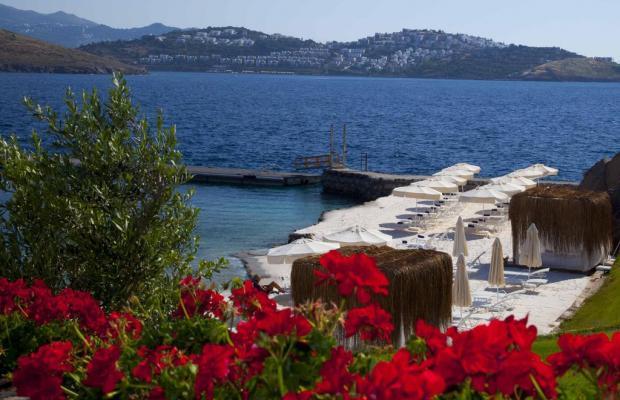 фотографии отеля Palmalife Bodrum Resort & Spa изображение №19