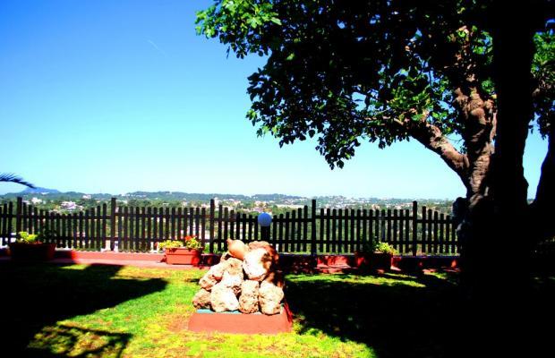 фотографии Green Garden Studios изображение №8