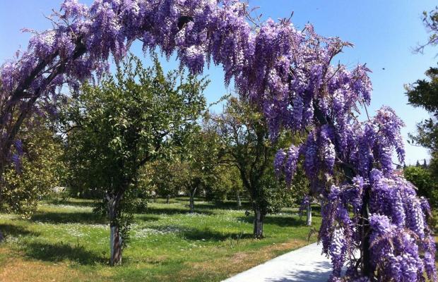 фото Garden Resort Bergamot (ex. New Garden Resort) изображение №42