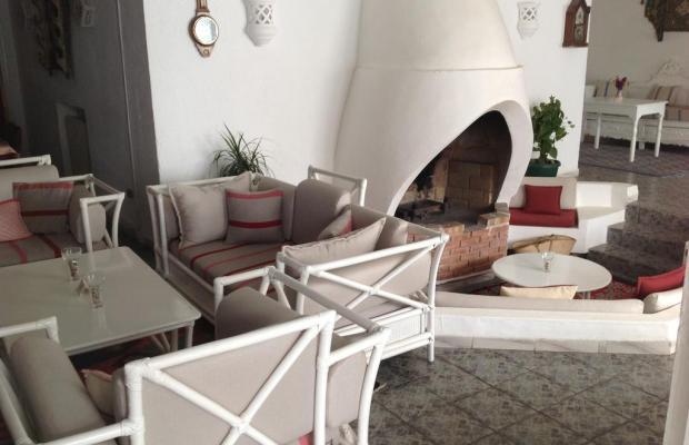фотографии Hotel Dar Ali изображение №16