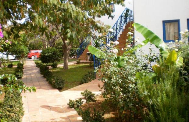 фото Oasis изображение №2
