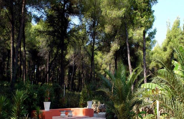 фотографии отеля Villa Afroessa изображение №19