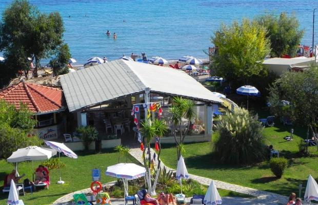 фотографии отеля Albatros изображение №15