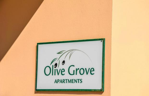 фото Olive Grove Apartments изображение №22