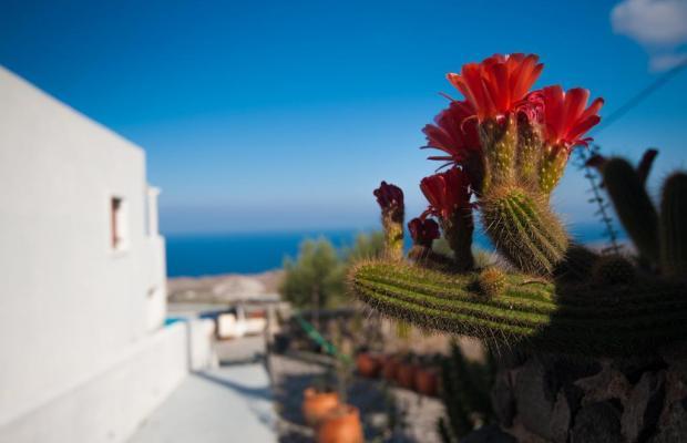 фото отеля Splendour Resort изображение №9