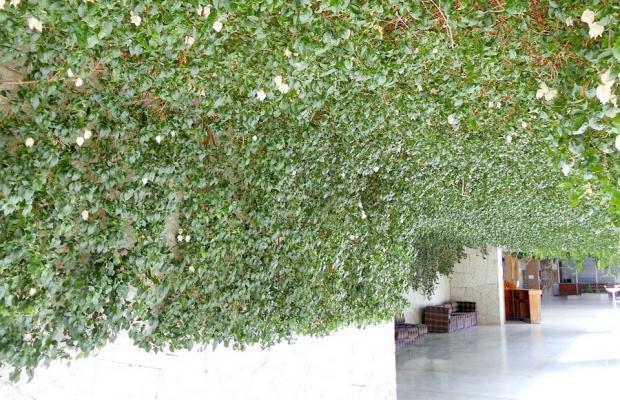 фото отеля Псоу изображение №5