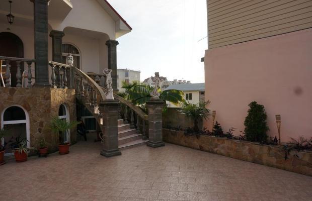 фото Бамбук (Bambuk) изображение №30