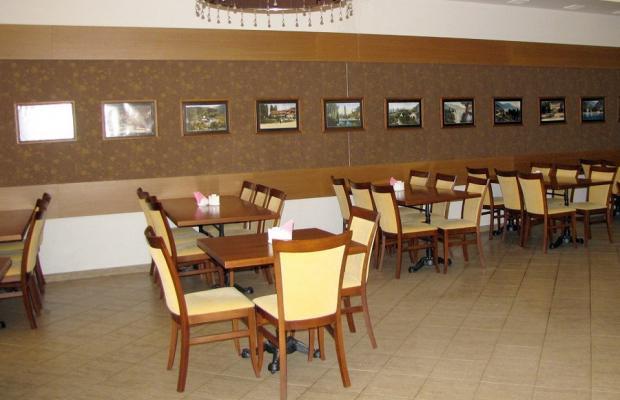 фото отеля Райда (Rayda) изображение №25