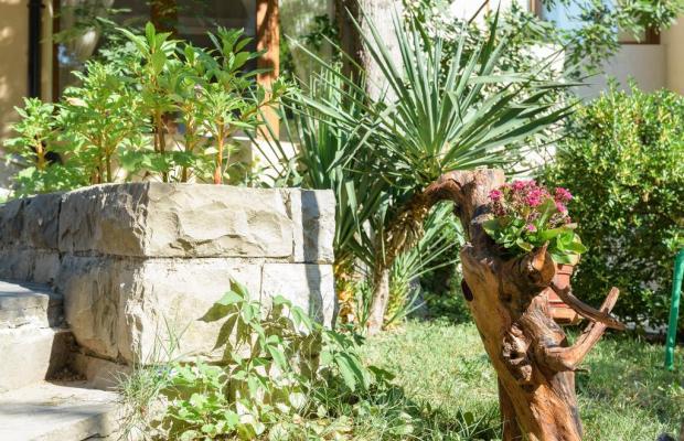 фотографии Оазис Парк Отель (Oasis Park Hotel) изображение №4
