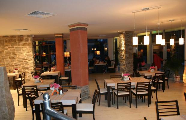 фотографии Luxor (Люксор) изображение №24