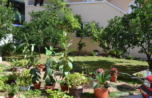 фотографии Bastrica House изображение №8