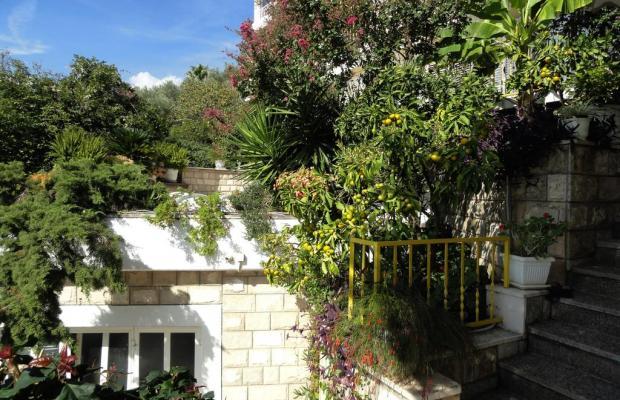 фотографии отеля Sun Rose Apart (ex. Villa Hara)  изображение №11