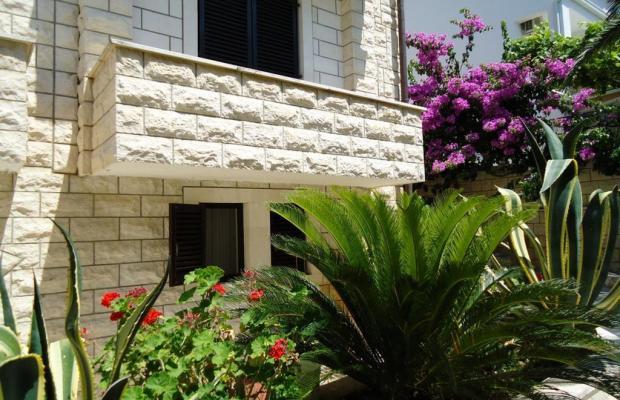 фотографии отеля Apartments Villa Mirjana изображение №39