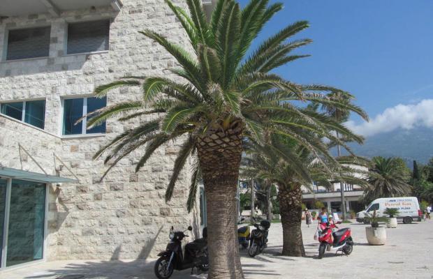 фото Villa Tropico изображение №2