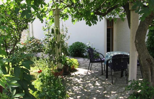 фото Villa Jelena изображение №10