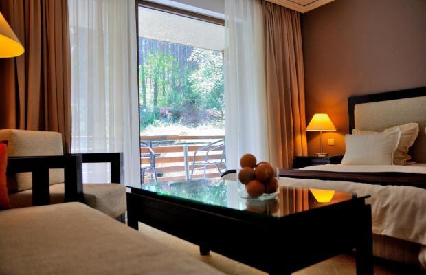 фотографии отеля Велина (Velina) изображение №11