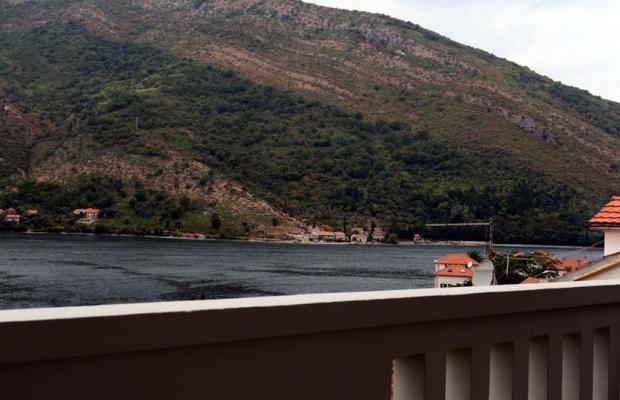 фотографии Apartments Villa Antonia изображение №36