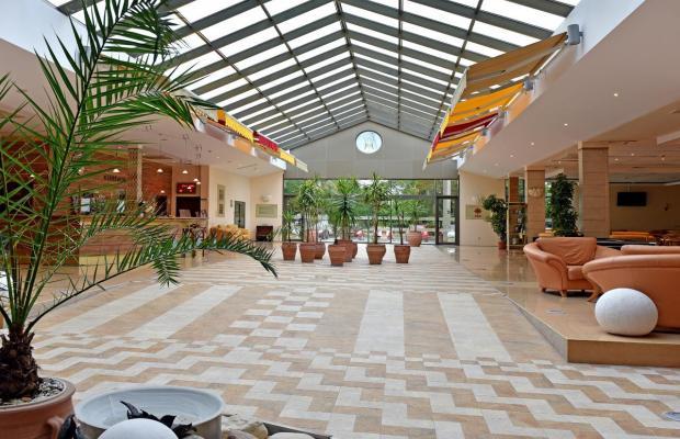 фотографии отеля Les Magnolias (Лес Магнолиас) изображение №27