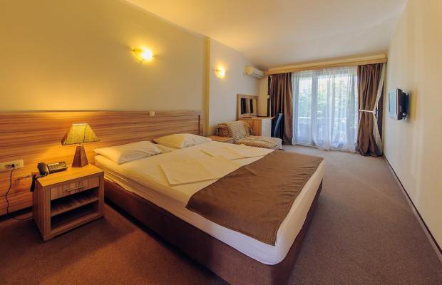 фото отеля Vile Oliva изображение №5