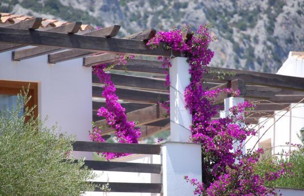 фотографии Palmasera Village Resort изображение №4