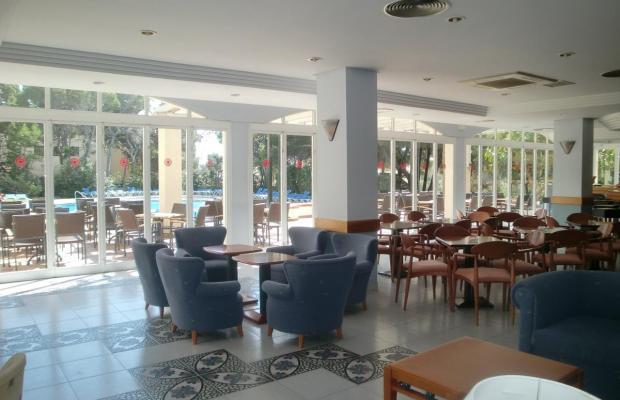 фото отеля Diamant Hotel изображение №29