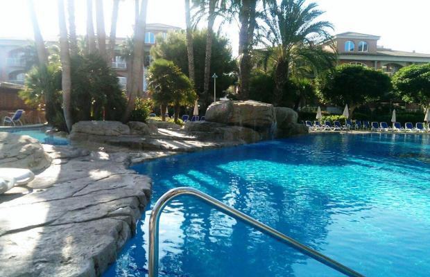 фото отеля Allsun Hotel Estrella & Coral de Mar Resort (ex. Estrella Coral de Mar Resort Wellness & Spa) изображение №5