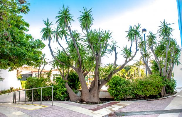 фото Acacia Marina Palace (ex. Terraqua) изображение №22