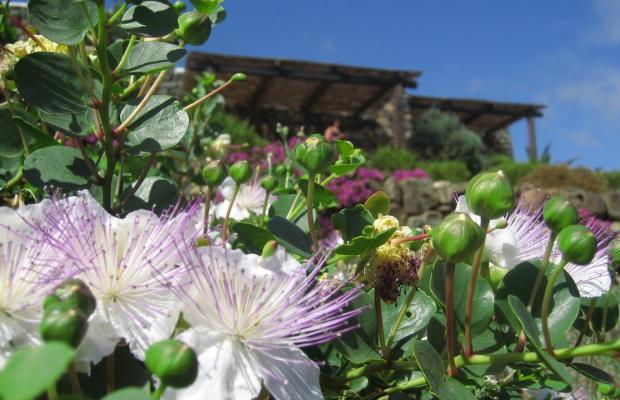 фото Pantelleria Dream изображение №14
