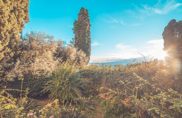 фотографии отеля Villa Paradiso изображение №3