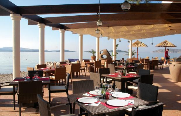 фото Solaris Lifestyle Hotel Jure (ex. Solaris Beach Hotel Jure; Holiday Beach) изображение №6