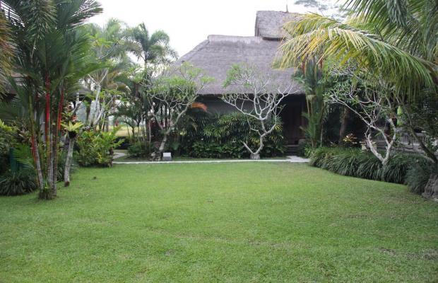 фотографии Villa Prana Shanti изображение №16