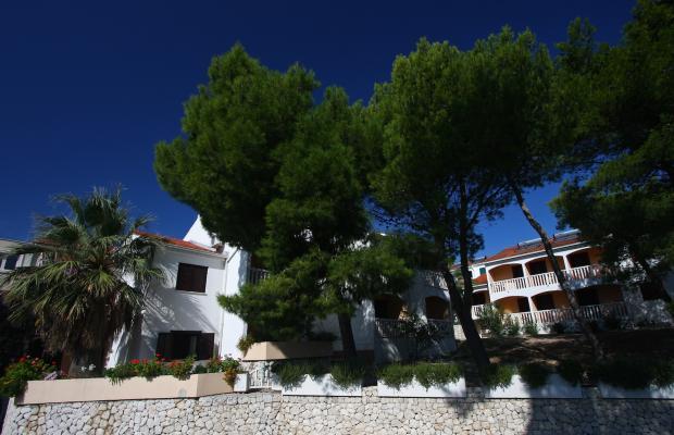 фотографии отеля Beach Apartments Lavica изображение №11