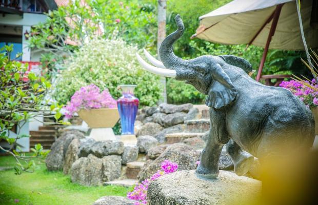 фотографии Coco Palace Resort изображение №8