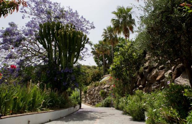 фотографии отеля La Posada Morisca изображение №7